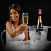 led-wijnstop-set-van-3 - VIPER
