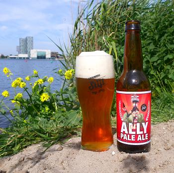 Stijl Ally Pale Ale
